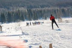 Grupo de corrediça dos esquiadores da montanha O esquiador a deslizar na montanha Esquiador e esquis foto de stock