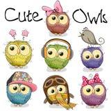 Grupo de corujas bonitos dos desenhos animados Foto de Stock