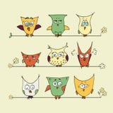 Grupo de corujas bonitos dos desenhos animados em um fundo amarelo Imagem de Stock Royalty Free
