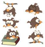 Grupo de corujas bonitos para você projeto cartoon Fotos de Stock