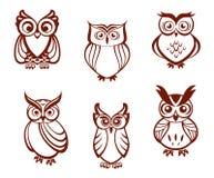 Grupo de corujas dos desenhos animados Imagem de Stock