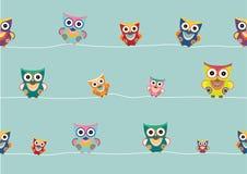 Grupo de corujas no fundo branco, ilustrações dos desenhos animados do vetor Imagens de Stock