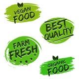 Grupo de crachás do alimento Alimento do vegetariano Fotos de Stock
