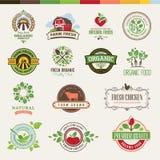 Grupo de crachás e de etiquetas para produtos orgânicos Imagens de Stock Royalty Free