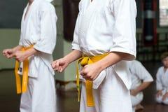 Grupo de crianças em um treinamento das artes marciais imagem de stock