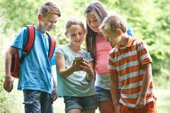 Grupo de crianças Geocaching que usa o telefone celular na floresta fotos de stock