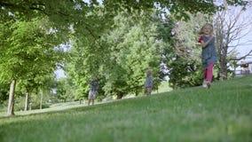 Grupo de crianças que correm no movimento lento HD completo do parque, dos meninos e das meninas filme