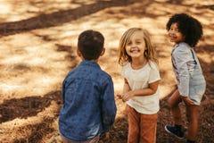 Grupo de crianças que jogam na floresta fotos de stock royalty free