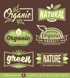 Grupo de cru, de vegetariano, de etiquetas saudáveis do alimento, de etiquetas e de elementos do projeto ilustração do vetor