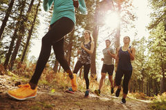 Grupo de cuatro adultos que corren en un bosque, cierre del ángulo bajo para arriba Imágenes de archivo libres de regalías