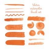 Grupo de cursos do vetor da escova da aquarela ilustração do vetor