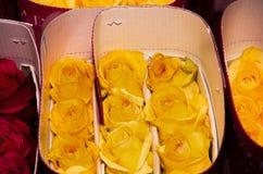 Grupo de dúzias bonitas de florescer ramalhetes das rosas amarelas e vermelhas Imagens de Stock Royalty Free