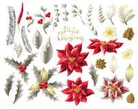 Grupo de decoração do Natal no estilo dourado, tal como a poinsétia, a baga do azevinho, o abeto-cone, o ramo do abeto e o outro  ilustração do vetor