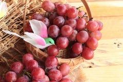 Grupo de delicioso fresco suculento do fruto das uvas Imagem de Stock Royalty Free