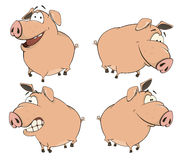 Grupo de desenhos animados alegres dos porcos Fotos de Stock Royalty Free