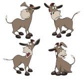 Grupo de desenhos animados dos burros Imagem de Stock