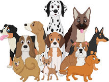 Grupo de desenhos animados engraçados dos cães ilustração do vetor