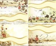 Grupo de design floral do vetor Ilustração do vetor ilustração royalty free