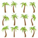 Grupo de dezesseis palmeiras diferentes dos desenhos animados no fundo branco ilustração royalty free