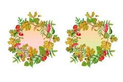 Grupo de duas grinaldas do outono com folhas e flores ilustração royalty free
