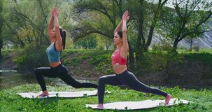 Grupo de duas senhoras que praticam a ioga junto na natureza na esteira da ioga eles que fazem esticando o quando do exercício do video estoque