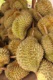 Grupo de durian Imagens de Stock Royalty Free