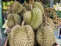 Grupo de durian en la mercado de la fruta Imagenes de archivo