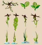 Grupo de elementos da natureza. Imagem de Stock Royalty Free