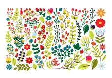 Grupo de elementos decorativos com flores e ramos Fotografia de Stock Royalty Free