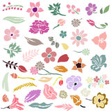 Grupo de elementos do design floral Fotografia de Stock Royalty Free