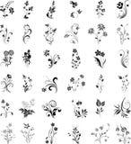 Grupo de elementos do design floral no branco ilustração stock