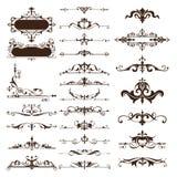 Grupo de elementos do projeto do vintage do vetor de ornamento ilustração do vetor
