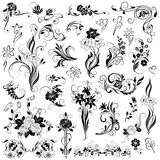 Grupo de elementos florais do vetor Fotografia de Stock