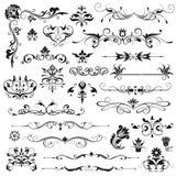Grupo de elementos florais do vetor Foto de Stock Royalty Free