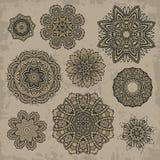 Grupo de elementos florais do vintage decorativo Ilustração do Vetor