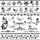 Grupo de elementos florais Ilustração Royalty Free