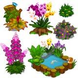 Grupo de elementos para o jardim do projeto ou um campo fotos de stock royalty free