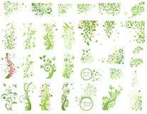 Grupo de elementos verdes do design floral Fotos de Stock Royalty Free