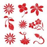 Grupo de elementos vermelhos do projeto da flor Foto de Stock Royalty Free
