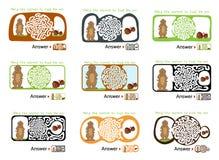 Grupo de enigma do labirinto para crianças com marmota e porca Ilustração do labirinto, solução incluída Foto de Stock