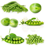Grupo de ervilhas verdes isoladas no fundo branco Fotografia de Stock