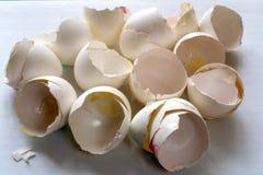 Grupo de escudos de ovo quebrados fotografia de stock royalty free