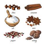 Grupo de especiarias - canela, pimenta, anis, noz-moscada, sal, cravo-da-índia ilustração stock