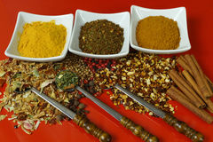 Grupo de especiarias e de temperos com as colheres velhas do metal na tabela vermelha Imagens de Stock