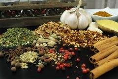 Grupo de especiarias e de temperos no preto Fotografia de Stock Royalty Free