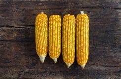 Grupo de espigas de milho em um fundo de madeira Fotografia de Stock