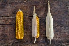 Grupo de espigas de milho em um fundo de madeira Foto de Stock