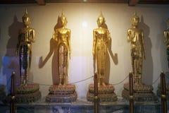 Grupo de estar Budas douradas em Wat Pho, cidade de Banguecoque em Tailândia foto de stock
