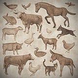 Grupo de estilo do vintage dos animais de exploração agrícola - 3D rendem Imagem de Stock Royalty Free