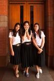 Grupo de estudante universitário Imagem de Stock